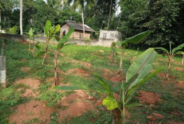 Land for sale Gampaha