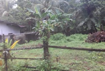 Land for sale Horana 280 Road