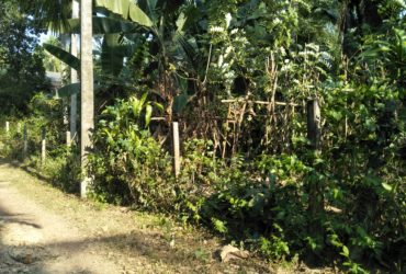 Land for Sale near Gampaha-Airport Bus Route